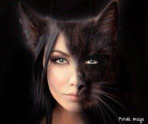 A photograph of a face half woman half cat